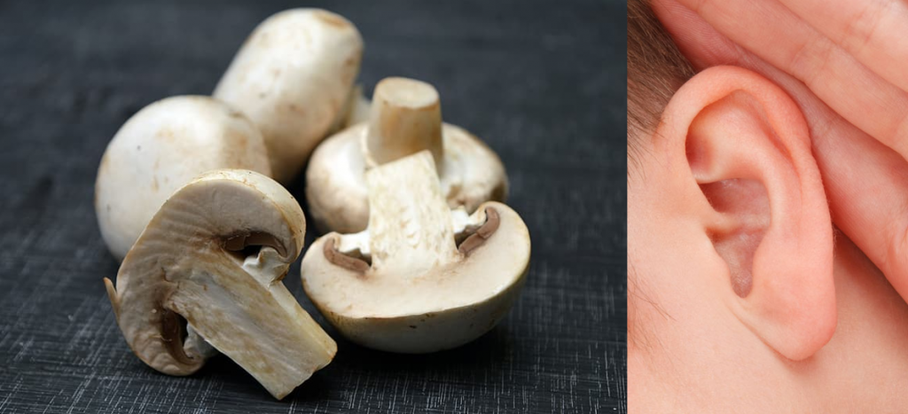 Chopped mushrooms look like ears